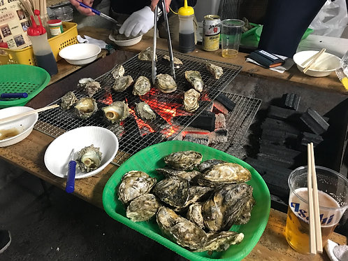 【Seafood gourmet including oysters & Sea bream fishing experience】