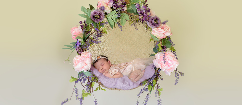 Olivia Grace's Newborn Photo Session with Meagan Stone Photography
