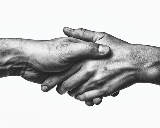A firm handshake between the two partner