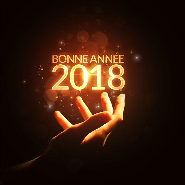photo-montage-bonne-annee-2018-23
