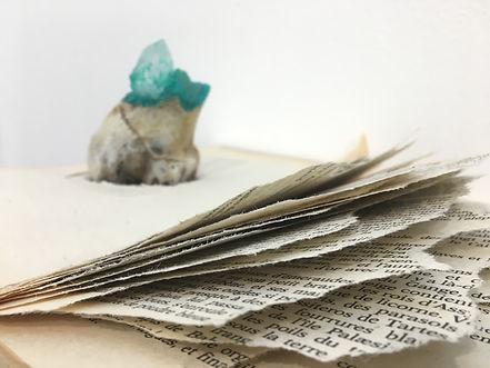 FOSSILES_-_Books,_paper,_stone,_bones,_i