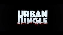 Urban Jungle : découvrez en exclusivité l'une des premières séries de Studio+