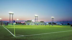 Incentivos deportivos y prácticas saludables en la empresa