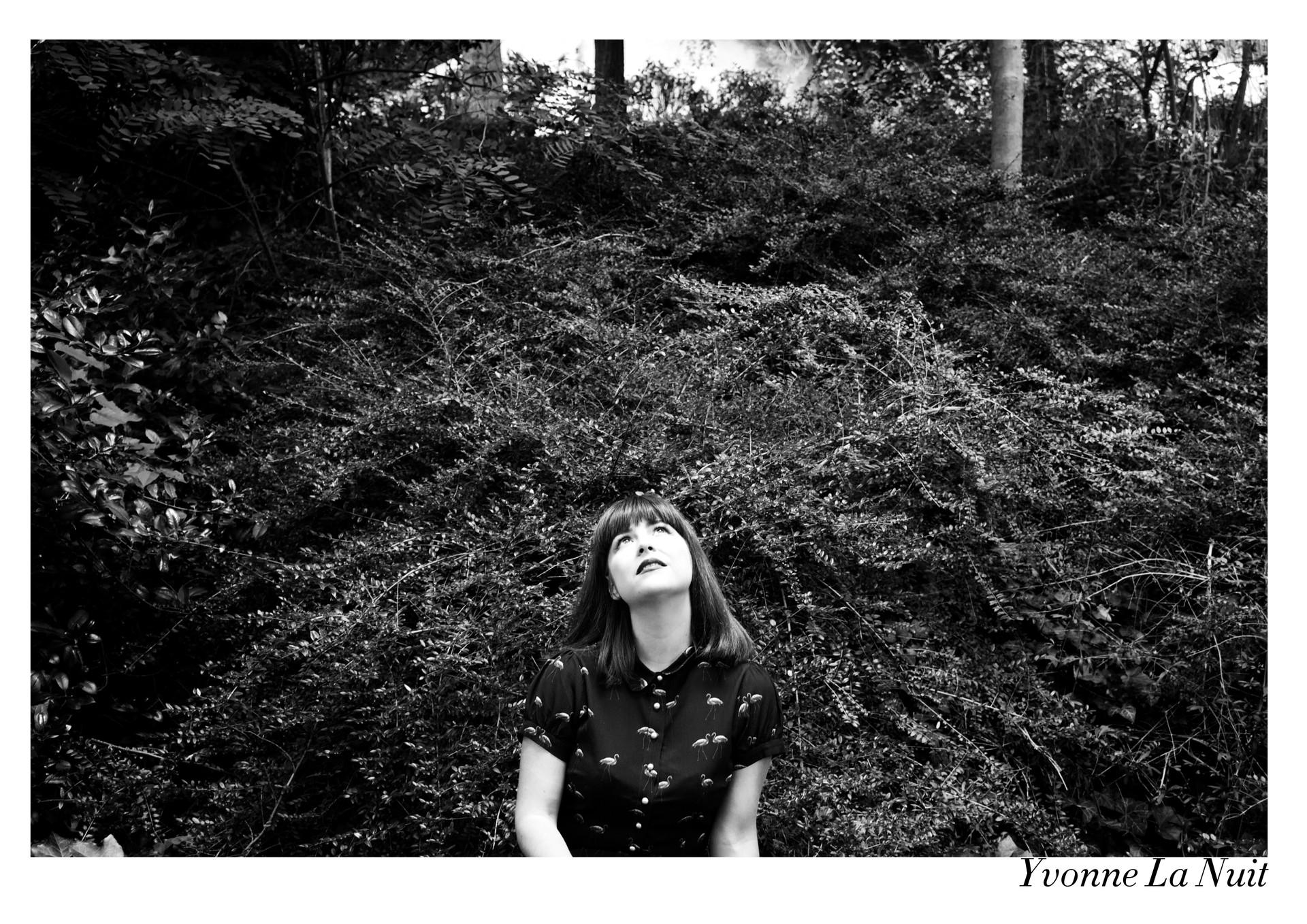 Yvonne La Nuit par Nicolas Vidal  #chanteusesdefrance