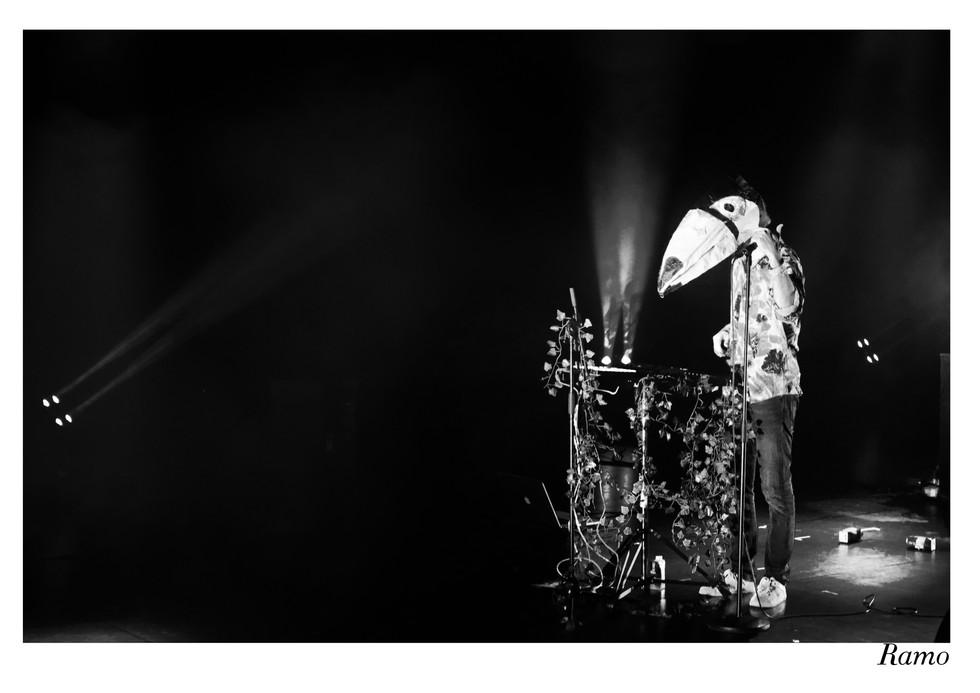 Faces - Des concerts pop38.jpg