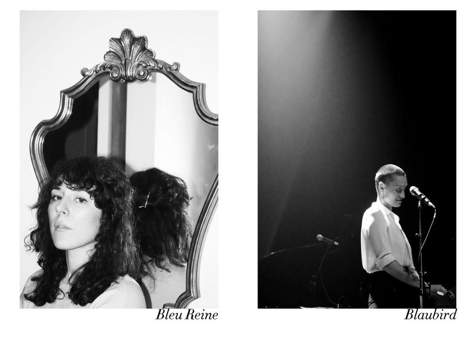 Bleu Reine et Blaubird par Nicolas Vidal  #chanteusesdefrance