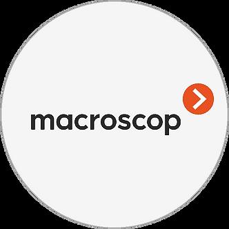 MACROSCOP LS ЛИЦЕНЗИЯ