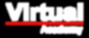 Virtual Academy title no logo.png