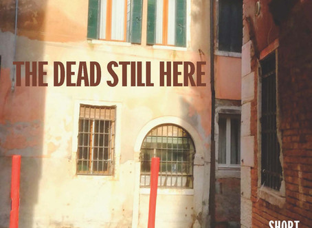 #GIVEAWAY- Interview – Review – The Dead Still Here by Laura Valeri