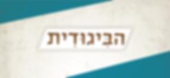 לוגו ביגודית_Artboard 5 copy 2.png