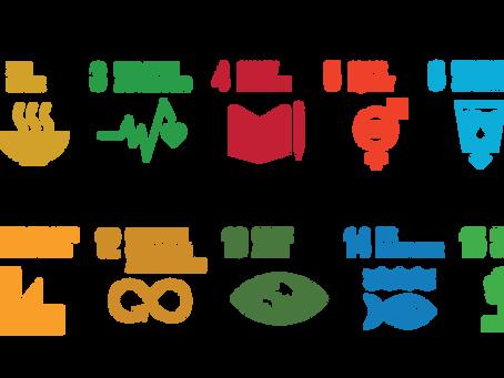 """יעדי פיתוח בר קיימא של האו""""ם (SDGs)"""