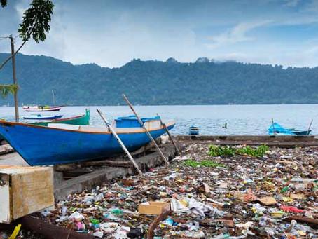 באוויר, בים, ביבשה ובצלחת: הפלסטיק נמצא במקומות שלא חשבנו עליהם