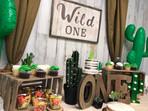 Wild One Cactus