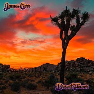 Desert Flower Cover Final (1).jpg