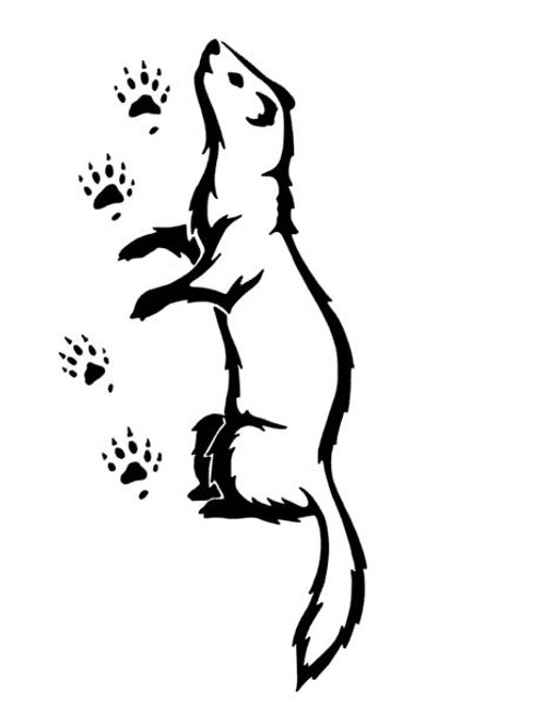 Curious Ferret and Paw Prints Vinyl Decal - Love Ferrets - Rescue a Ferret