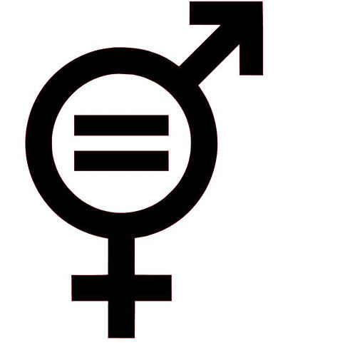 Gender Equality Vinyl Decal - LGBTQ Stickers - Pride Stickers