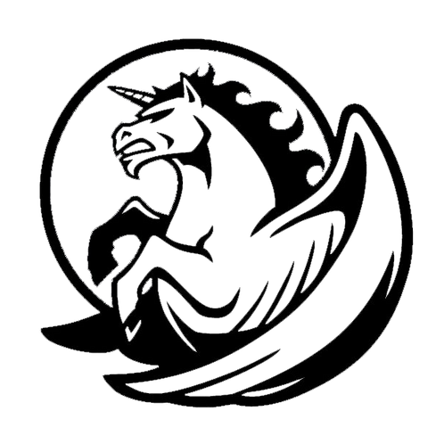 Custom Order - Team Pegasus - NHorton