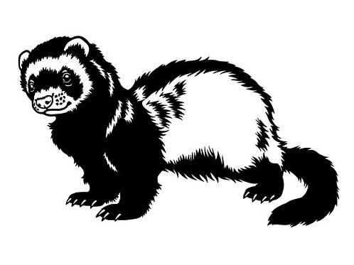 Sable Ferret Decal - Masked Ferret Vinyl Decal - Cutest Lil Bandit Sticker