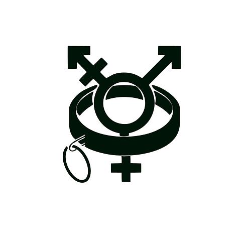 Collared Transgender Vinyl Decal - BDSM / Alternative Art - Owned Trans Decal