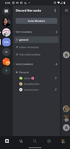 discord mobile screen.png