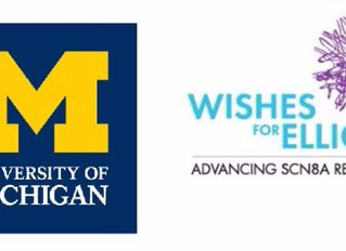 Small Family Foundation Partners with University of Michigan to Develop SCN8A Mouse Models of Most S