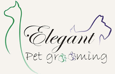 Dog and Cat grooming in Mesa Az