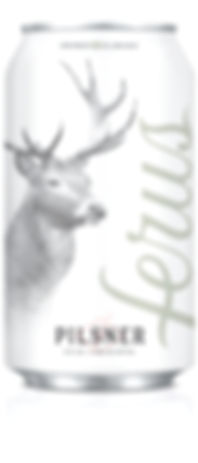 stag-can4.jpg