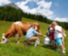 Dovolená v Rakousku s dětmi - Milka