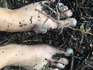 Feet In Soil, Part 1