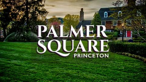 Palmer Square_logo_FI site.png