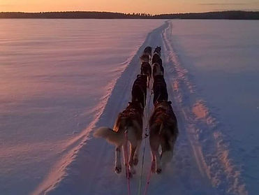 10 dog team crossing a frozen lake