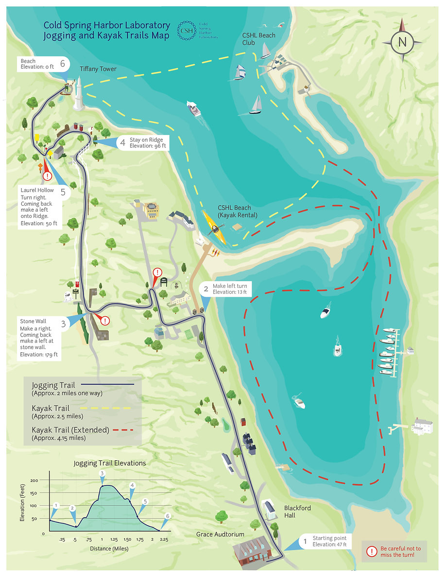 Kayak Map