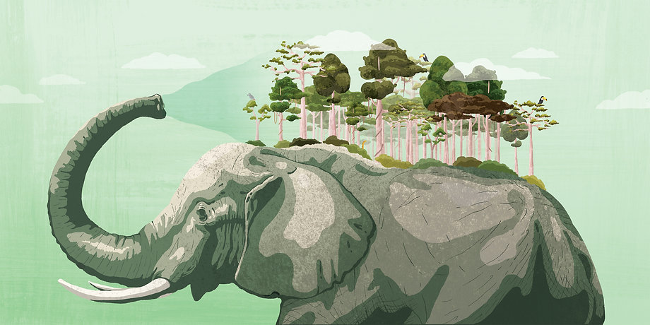 Elephant_final_2.jpg