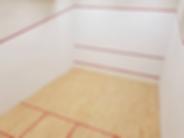 Royal Citadel Plymouth squash courts