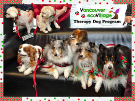 These Therapy Dogs will Visit YOU this Christmas to Fill Your Heart with Love