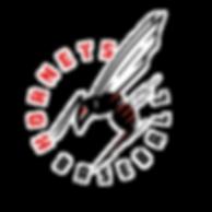 AM_Hornets Baseball Logo_Final_wType Cir