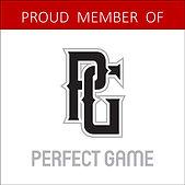 perfect game meber badge.jpg