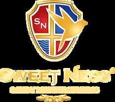 Логотип_Sweet_Ness_Монтажная область 1.png