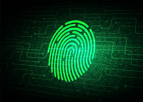 fondo-seguridad-cibernetica-red-huellas-