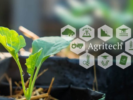 Our Agri-Business experience continues to grow