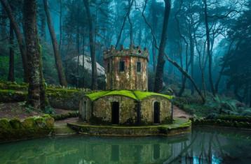 forest_pond_in_sintra_landscape_mist_tre
