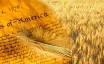 American Immigration Policy: Creed and Soil