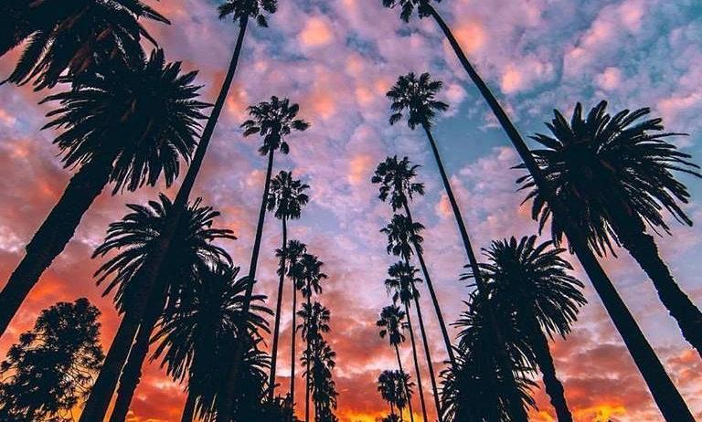 Los Angeles Elite Journey Book