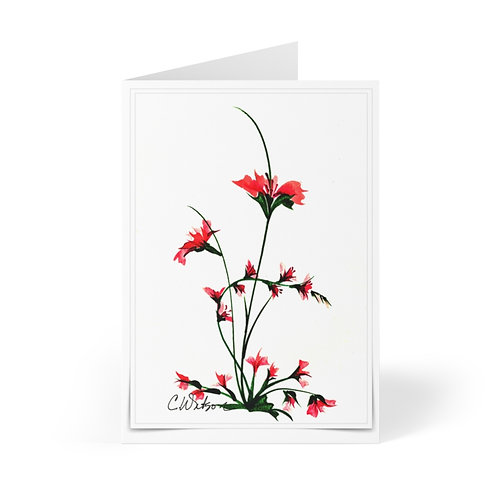 Traditionally painted by C.Watson Original and printed on Greeting Cards (8 pcs)