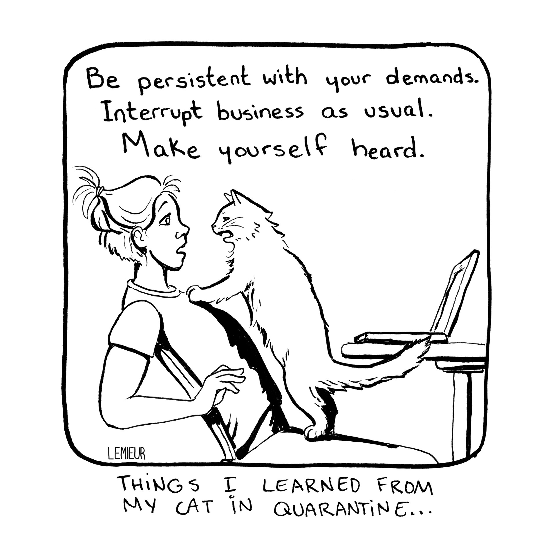 Excerpt from: Things I Learned From My Cat in Quarantine