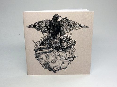 Birds Nest booklet