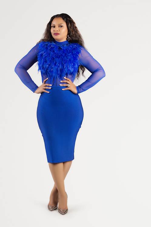 Royal Blue Feather Top