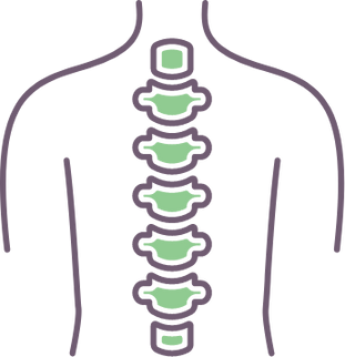 spine (1).png