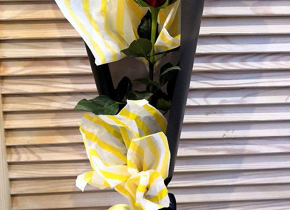 Роза в оформлении