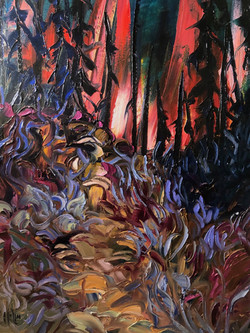 Light in the Buck Brush